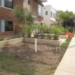 Landscaping Santa Monica